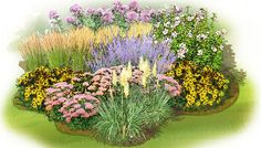 Water-wise garden plan: Looking for beauty without the hassle of constant watering? Try this easygoing plan on for size.