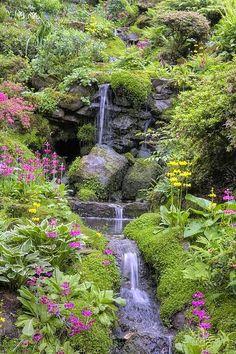 Beautiful #garden #backyard