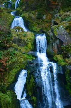 The longest waterfall in Germany - Triberg, Germany.  So beautiful and serene in the fall!