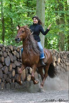 Clemence Faivre - Horse Show, with Gotan, photo by Christele Alphonse