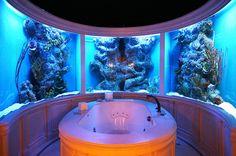 Custom bathroom aquarium by City Aquarium