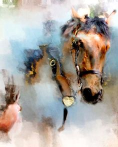 Mounted Police Horse in New York Mounted Police by 1029Gallery