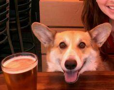 Ahhhh, so refreshing! I love a good beer!