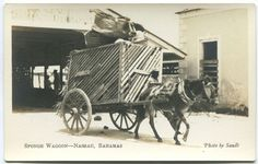 Old sepia real photo postcard, circa fine unused. British West Indies, Nassau Bahamas, Photo Postcards, Island Life, Sands, Alchemy, Wedding Decor, Broadway, Paradise