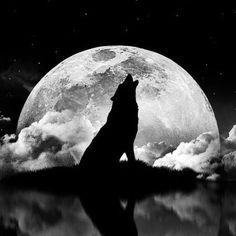 G'night Moonchilds ✨