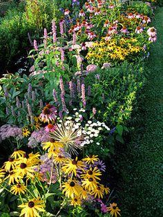 Filling Flower-Garden Gaps, Perennial Gardening: Gardener's Supply