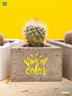 Un ambiente cálido y atrayente, es la sensación que nos da la combinación entre colores calientes y fríos.  #ViveElColor