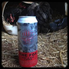 The Fox - a crafty little lager....