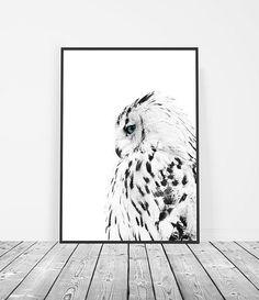 Black and White Print | Owl Print | Owl Photography | Bird Art | Owl Art | Scandinavian Artwork | Scandinavian Decor | Bird Print. Wall Art by Little Ink Empire