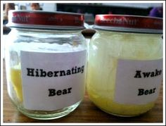 Hibernation Should Be For Humans, Too... a science experiment to help explain hibernation.  You need baby food jars & butter!  Freebie recording sheet link in this post!