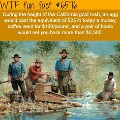 California gold rush - WTF fun facts