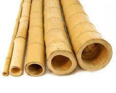 Bambu Tratado - Para Jardins, Cercas, Pérgolas, Gazebos..... - R$ 7,50