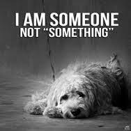 Η   ΕΦΗΜΕΡΙΔΑ   ΤΩΝ    ΣΚΥΛΩΝ: Eίμαι κάποιος ...