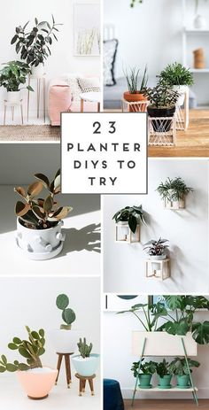 Unique Home Decor 23 unique DIY planters ideas for spring / summer and beyond. Click through to see all 23 projects. Home Decor 23 unique DIY planters ideas for spring / summer and beyond. Click through to see all 23 projects. Unique Home Decor, Cheap Home Decor, Diy Home Decor On A Budget, Ikebana, Decoration Plante, Diy Planters, Planter Ideas, Diy Planter Stand, Hanging Plants