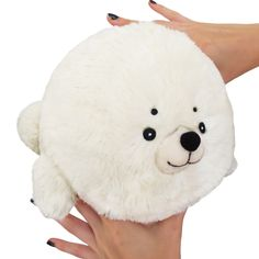 The mini Seal has arrived! #seal #squishable
