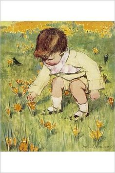 Amazon.com - Photographic Print of Picking Crocii by Muriel Dawson -