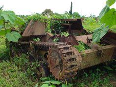 des tanks avalés par la nature comme si la guerre navait jamais eu lieu  2Tout2Rien