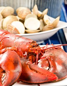 Stovetop Clambake from MyGourmetConnection