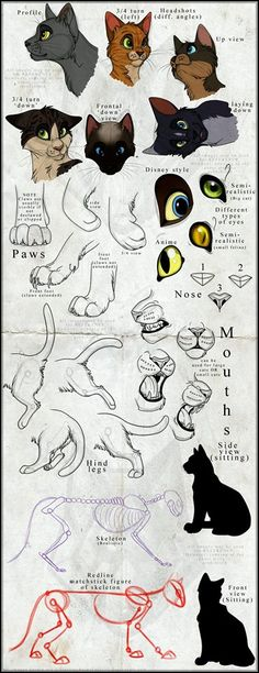 Comment dessiner des chats / How to draw cats ♤Melyk Cat Reference, Drawing Reference, Design Reference, Drawing Lessons, Drawing Techniques, Drawing Tips, Drawing Ideas, Car Drawing Easy, Drawing Poses