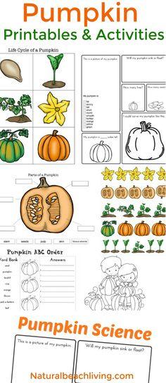 Pumpkin Activities, Pumpkin Life cycle, Free Printables, Fall Science, FIAR, Pumpkin Printables, Coloring Pages, Pumpkin activities for kids, STEM