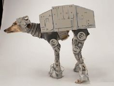 martha stewart batwings dog costumes | This Star Wars' AT-AT costume for a dog looks great. Katie Mello ...
