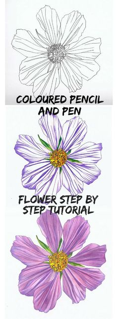Create a beautiful flower in the straight forward step by step tutorial, #ad #commissionlink #art #artlessons #drawing #drawinglessons #tutorial