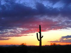 The sunsets in phoenix:the reason i stay