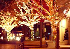 Que nesse Natal todas as pessoas possam perceber que vale a pena viver mais um Novo Ano. Um Feliz Natal!