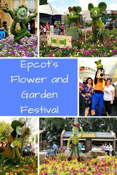 My favorite Disney time of year is when Epcot's 90 day celebration of Flowers and Gardens opens in March. Check out the free concerts and amazing plants, flowers, butterflies, topiaries, and epic eats.