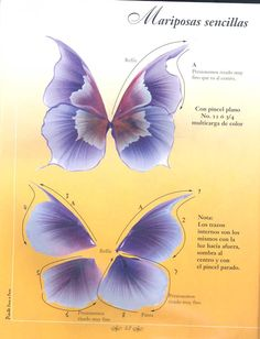 Painting a butterfly with ruffle strokes.