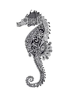 Seahorse Drawing by Jakki Oakes