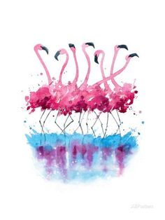Flamingos Watercolor Painting Posters by Kamenuka at AllPosters.com