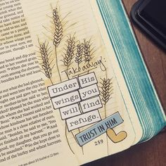 Boaz's blessing to Ruth includes this imagery. My takeaway for this part of Ruth is to trust the Lord, even when I cannot see where the journey is leading. #illustratedfaith #biblejournaling #journalingbiblecommunity