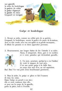 Guêpe et bouledogue Unique, Zoology, Dog