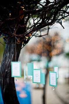escort cards hanging from trees