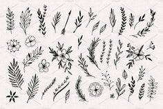 Hand Sketched Vector Vintage Elements Stock Vector - Illustration of leaf, natural: 72436689 Line Art Flowers, Flower Art, Drawing Flowers, Planner Doodles, Scandinavian Folk Art, Flower Sketches, Leaf Template, Hand Sketch, Wild And Free