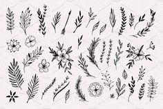 Hand Sketched Vector Vintage Elements Stock Vector - Illustration of leaf, natural: 72436689 Line Art Flowers, Flower Art, Framed Leaves, Planner Doodles, Scandinavian Folk Art, Flower Sketches, Desenho Tattoo, Hand Sketch, Wild And Free