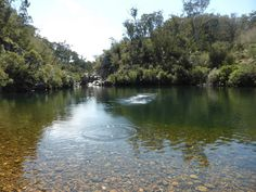 Blue Pool is a fantastic, deep swimming hole in a gorge on Freestone Creek, and one of the most popular spots in the state forest on a hot day. After your swim, you can walk a couple of hund…
