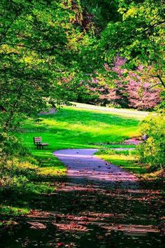 --Summertime Bench-- Taken: Shank Park, Hershey, PA. Green Nature, One Pic, Summertime, Golf Courses, Scenery, River, Park, Wallpaper, Places