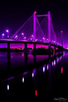 Cable Bridge ( Ed Hendler Bridge ) ,Washington