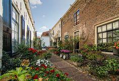 Straße, gesäumt von Blumen in Elburg (Niederlande)