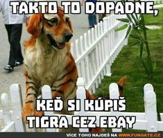 Takto to dopadne,. Psy, Body Painting, Funny Images, Jokes, Humor, Quote, Bodypainting, Humorous Pictures, Body Paint