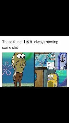 Sorry for the language but true Funny Spongebob Memes, Cartoon Memes, Stupid Funny Memes, Funny Relatable Memes, Funny Facts, Hilarious, Spongebob Pants, Funny Stuff, Cartoons