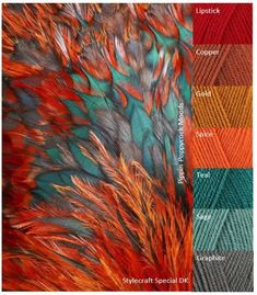 Feather – pippin poppycock - Yarn Color Combos - New Color Yarn Color Combinations, Color Schemes Colour Palettes, Room Color Schemes, Colour Pallette, Orange Color Schemes, Orange Color Palettes, Color Balance, Colour Board, Color Swatches
