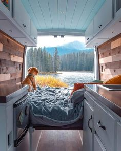 This is the cutest sprinter tag I& ever seen! Great colors f- Dies ist der niedlichste Sprinter-Umbau, den ich je gesehen habe! Tolle Farben f This is the cutest sprinter conversion I ever … - Build A Camper Van, Life Hacks, Life Tips, Kombi Home, Sprinter Van Conversion, Conversion Van, Camper Van Conversions, Van Conversion Interior, Van Home