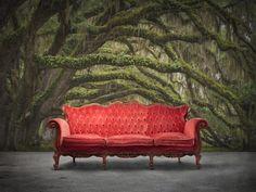 Fairy Forest wall murals - wallpaper -   Rebel Walls Australia