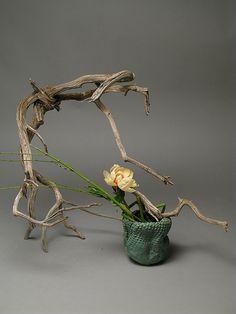 dry manzanita, peonie, equisetum | Gordon | Flickr