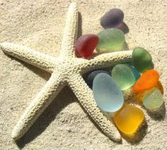 Look for shells and sea glass on the beach!