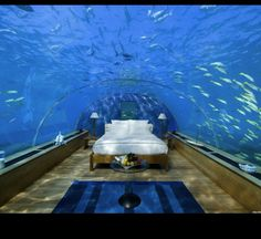 Bedroom Under The Sea