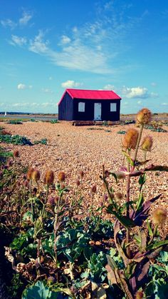 FISHING SHED-Rye Harbour